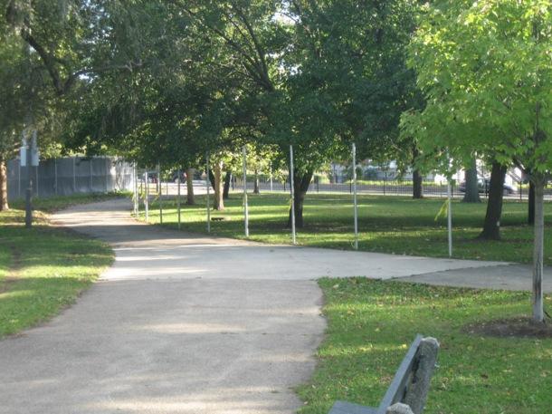Fencing off the Oak savanna along Irving Park