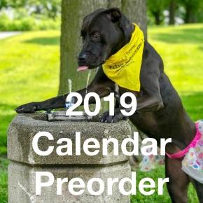 Preorder Your 2019Calendar